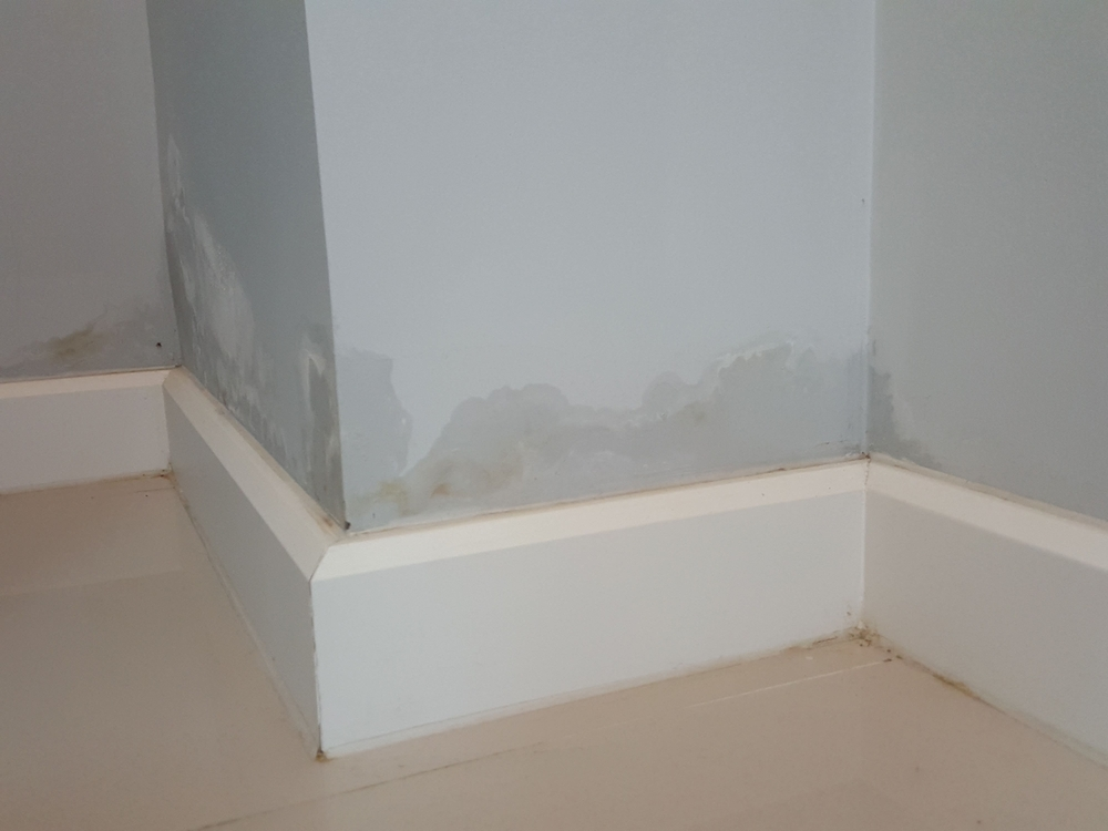 Property Defects To Be Aware Of When Buying